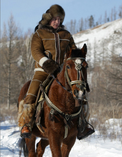 13 Images Of Vladimir Putin Doing Things