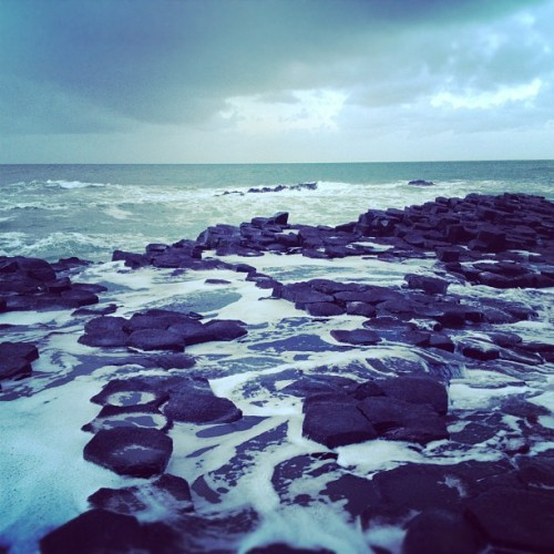Giant's Causeway, Northern Ireland. Take me back.