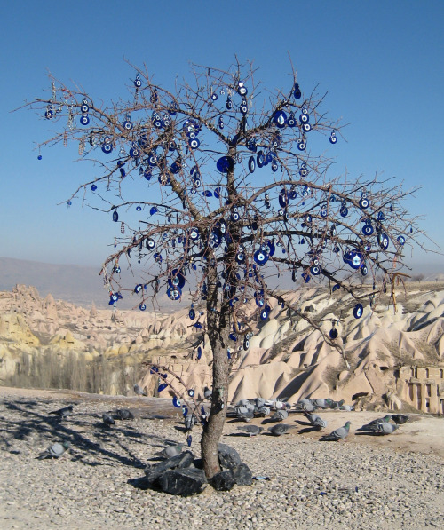 Tree with nazars in Cappadocia, Turkey
