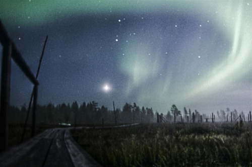 rebecca—b:  Northern Lights on Flickr. Back from Finland sampling for my 4th year project - got to see the Northern lights!!!  (picture is a bit grainy/blurry due mist & ice so my tripod kept slipping a little)