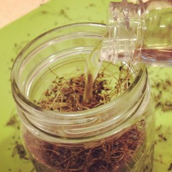 Making an infusion with thyme and rice wine vinegar.   Will make a sweet acne-fighting toner. (Taken with Instagram)