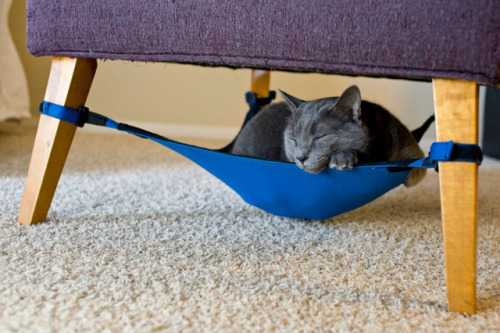 laughingsquid:  Cat Crib, A Hammock For Cats That Fits Inconspicuously Under a Chair  I will have this.