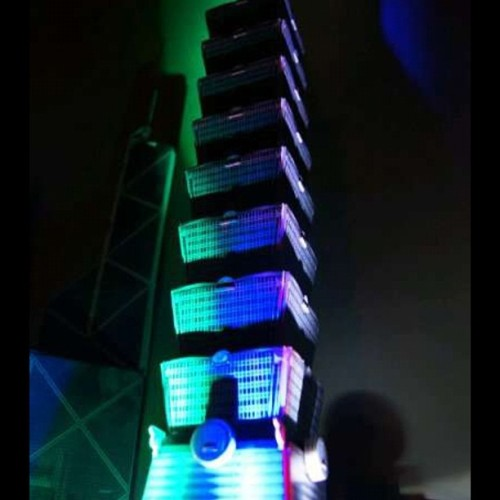 #photograph #my #collection #building #taipei101 #taipei  (Taken with Instagram)