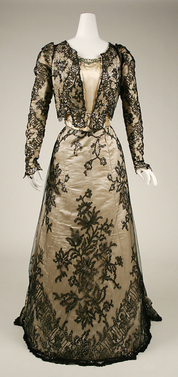 Evening Dress 1898-1899 The Metropolitan Museum of Art