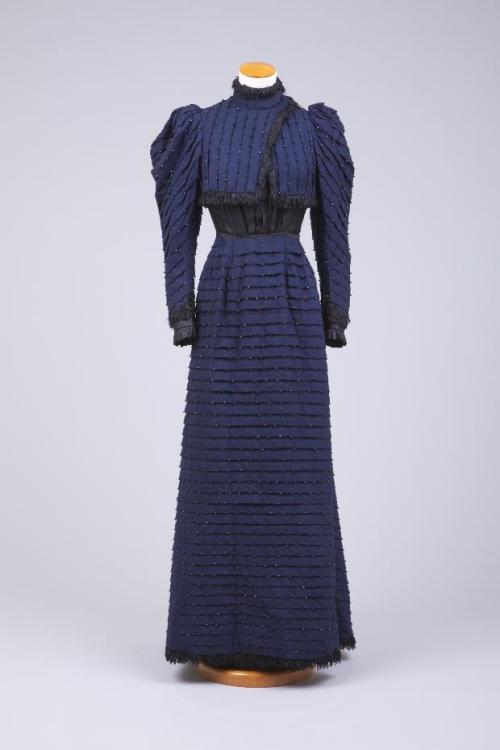 Dress 1893-1895 The Goldstein Museum of Design