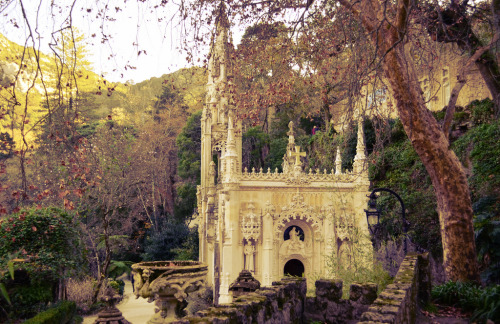 allthingseurope:  Quinta da Regaleira, Sintra, Portugal (by The Globetrotting photographer)