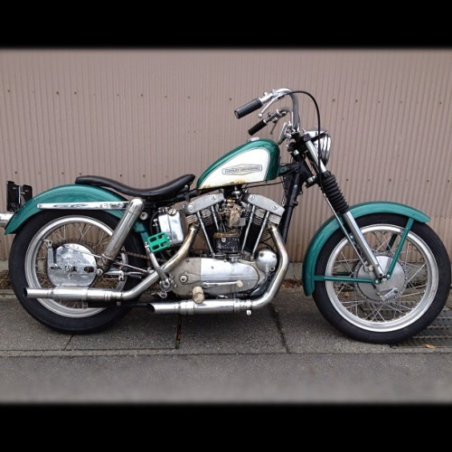 harauru:  Here is my another #badass#1966#harleydavidson#xlch#sportster#ironhead with#nofilter (Instagramで撮影)