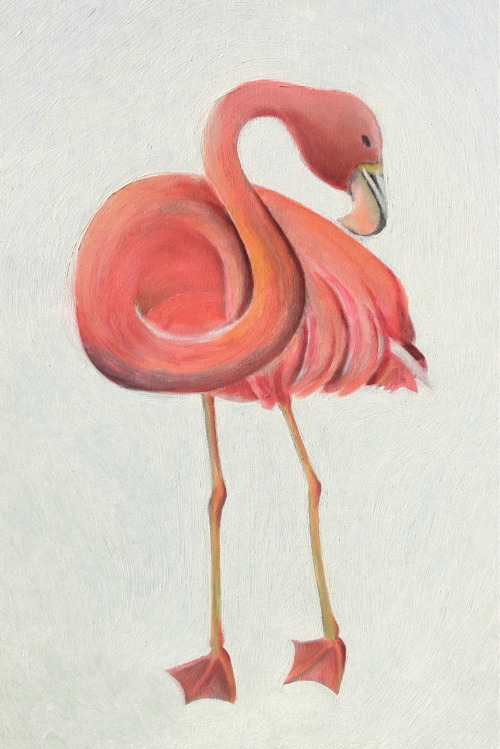 Flamingo, finished.