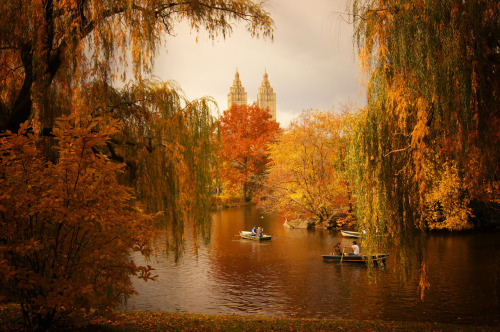"Central Park autumn landscape overlooking the lake and San Remo.  There are days in Central Park during the autumn when the weather is deliciously ominous. These are the sorts of days when grey clouds do their best to compete with the sunlight for the spotlight. I love the quality of this sort of contrasting light. During moments when the sun does manage to peek through the gray blanket of clouds, the foliage seems to reel in the bits of scattered sunlight.  This is a vista that seems to come alive in the autumn and winter due in part to Central Park's beautiful willow trees. There is a quality to the placement of the branches that is reminiscent of theatrical stage curtains in a persistent state of dramatically opening to reveal the landscapes that are just beyond their grasp as if they are revealing a show that comes alive in the final two acts of a performance that spans a year.  In the autumn, these sorrow-soaked branches frame the sprawling autumn landscape that surrounds the lake and in the winter when the lake is covered in snow, the same branches hold multitudes of icy tears framing the towers of San Remo perfectly.  —-   View this photo larger and on black on my Google Plus page  —-  Buy ""Sorrow-soaked - Central Park Autumn Landscape"" Prints here, email me, or ask for help."