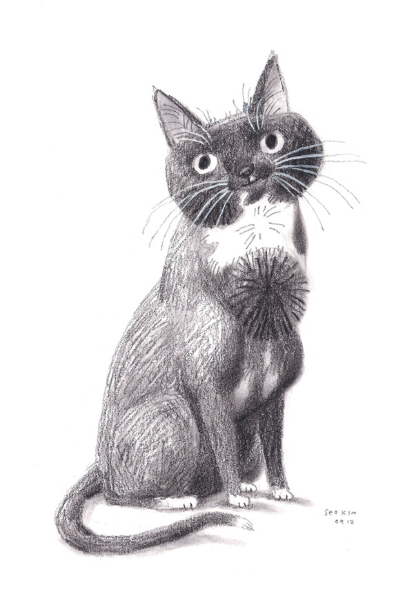 Graphite (and a bit o gouache) drawing of Chester for Corey Valuck.