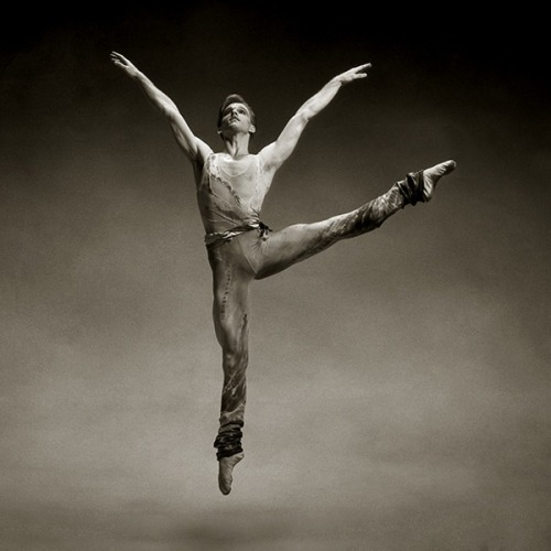 randombeautysls:  David Bushman, North Carolina Dance Theatre.