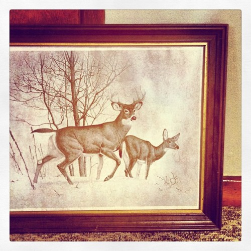 Thrifted: Vintage Deer Frame ($2 find!) (Taken with Instagram)