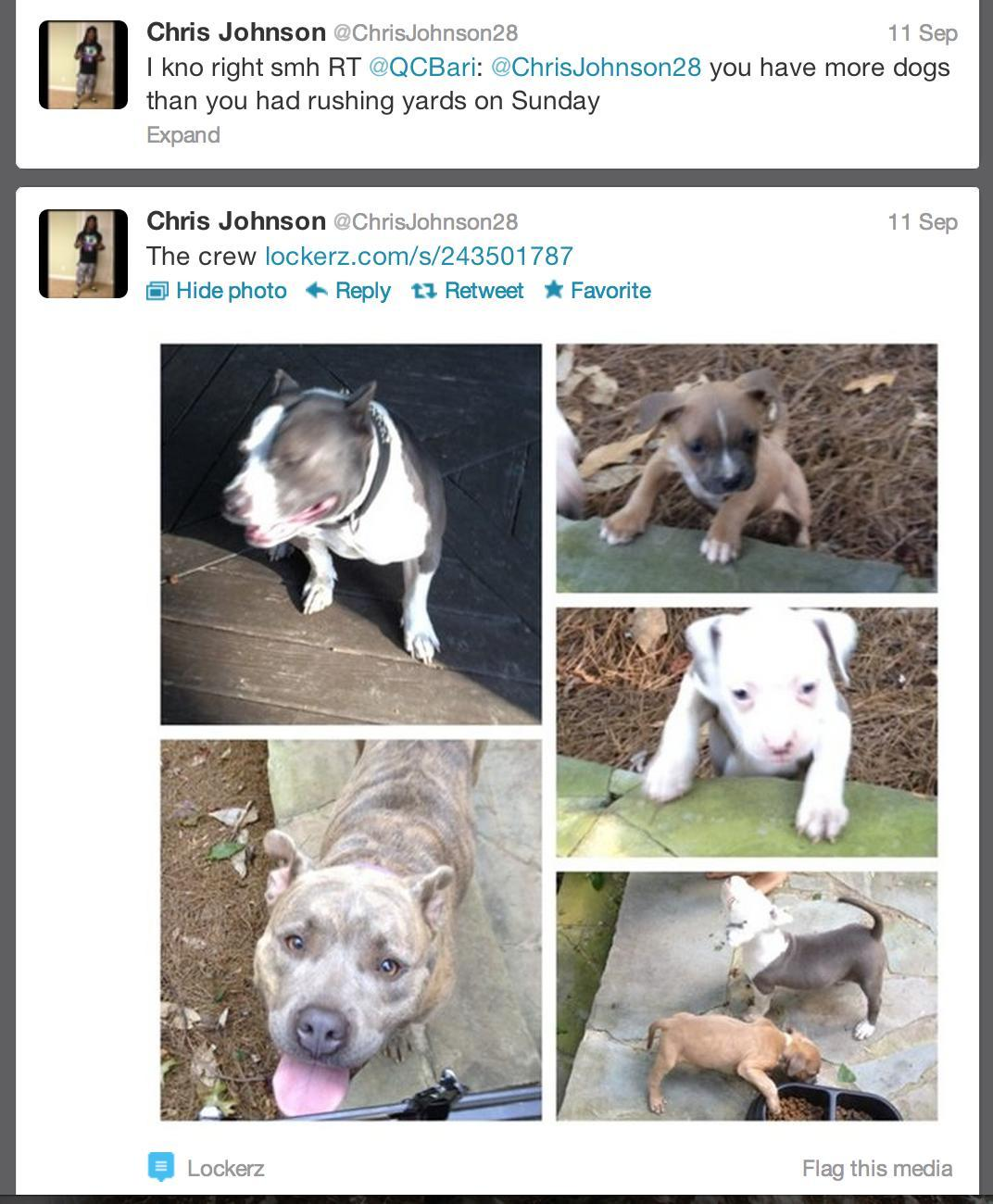 After posting images of his dogs, a fan tweets at Titans running back Chris Johnson. Hilarity ensues.