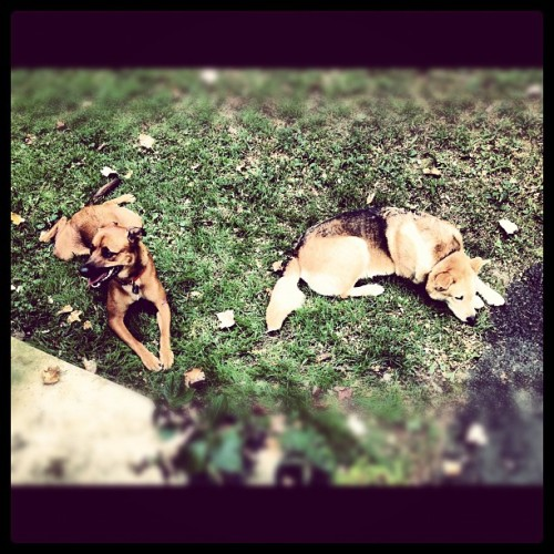 Best friends! (Taken with Instagram)
