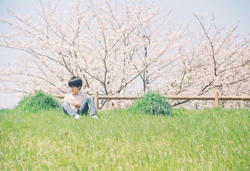 hislolita:  春、うらら。 by *:Hinata:* on Flickr.