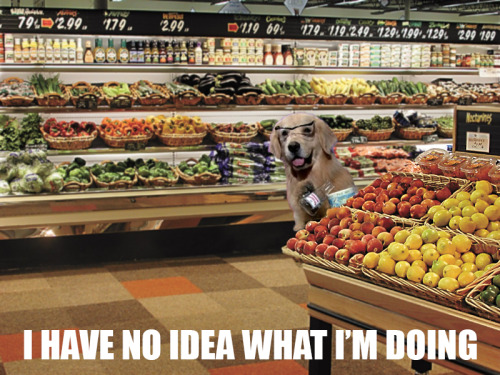 Me in the produce department at a grocery store, trying to pick decent veggies and fruit.