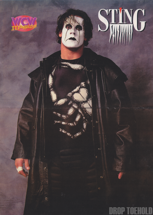 Sting Poster - WCW Magazine #25 [March 1997] Crow Sting will always be my favorite Sting (second place goes to the Fields of Gold Sting).
