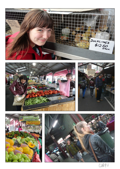 "The one thing I already miss about Melbourne is the Queen Victoria Market. Open at strange hours & on sparatic days, I ended up there almost weekly for yummy & less expensive produce. Whether in need of fresh meat & dairy, souvenir finds, or even some chickens, this market was the place to go. I'd spend countless hours browsing through every aisle, every shop & hunting for the best priced kiwis each week. 10 for $2 kiwis? Oh, yeah…  -Cory U  PS I still can't believe some Australians have ""chooks"" laying eggs in their backyards, but I can't really complain since that's the way I get them now too."