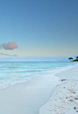 manolescent:  white sand beach