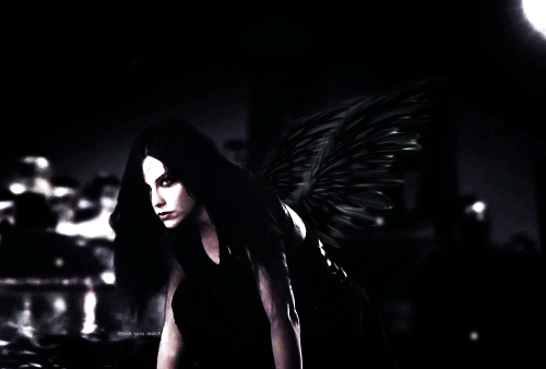 Evanescence Songs Project, Evanescence 2.