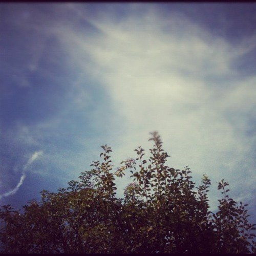 Yesterday's sunbathing sky. #weekend #summer #nature #hubnature #igers #sky #cloud #igerslondon #igersoftheday #instagramhub #ignation #instamood #instagood #instaaddict #webstagram #tweegram #bestoftheday #picoftheday #photooftheday #iphoneonly #iphonesia #igdaily #instagramers #statigram #instahub #photo #iphone #instacolour (Taken with Instagram)