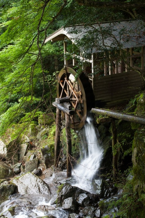 moondancehooper:   Waterwheel