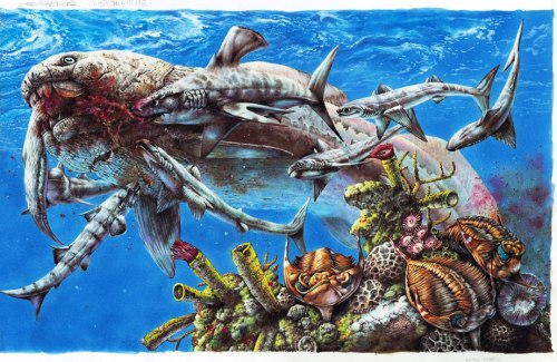 "paleoillustration:  ""Devonian Extinction"" by Steve White: ""This was another piece for Australian publisher Weldon Owen. It features the giant armoured fish, Dunkleosteus, after making a kill. It is being mobbed by a number of early shark: several Cladoselache; a male 'anvil shark', Stethacanthus; and, lower left, Ctenacanthus. In the foreground a trio of the trilobite, Huntonia, forages through a reef of horn corals, brachiopods and sponges."""