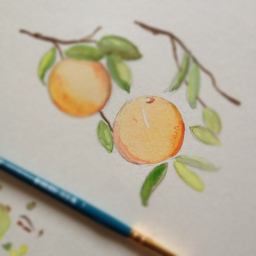 working on some new label ideas 🍊🍊#orange #watercolor #painting #paint #cocolove #cocolovehomemade (Taken with Instagram)