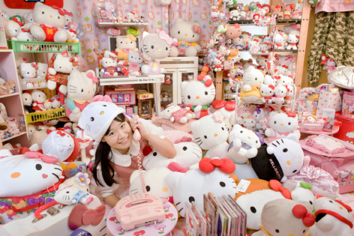 saraspiderwebs:  Largest collection of Hello Kitty memorabilia: Asako Kanda (Japan) has 4,519 different Hello Kitty items. Her house is filled with Hello Kitty items, such as a Hello Kitty frying pan, a Hello Kitty electric fan and a Hello Kitty toilet seat.