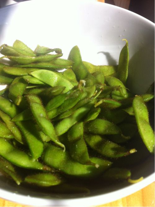 We were lucky enough to get fresh edamame—soybeans—in the share this week.  They came still attached to a bunch of huge leafy branches, so the gatitos and I had great fun snapping them off an disposing of all the extra vegetation.  All I did was rinse the pods, then add them to boiling, salted water for 4 minutes.  I tossed with a little extra sea salt afterwards, then promptly inhaled an entire bowl for lunch.  Yummmm!