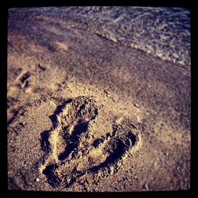 #heart #art in the #sand  (Taken with Instagram at Toronto Island)