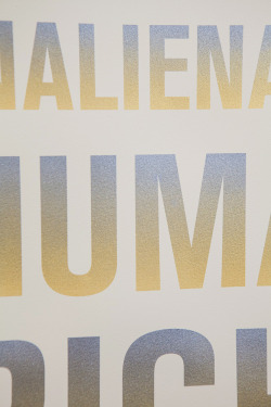 Screen Print detail, CLITERACY, 2012 by Sophia Wallace