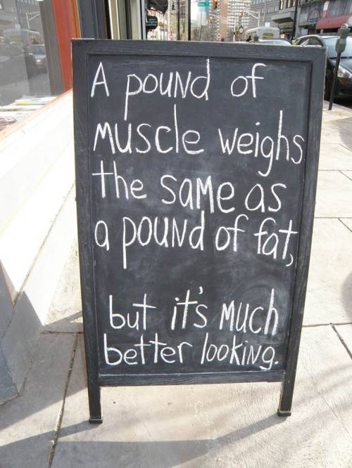 motiveweight:  Muscle looks better than fat.