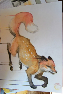 watercolor over line two animal hybrid fox & deer