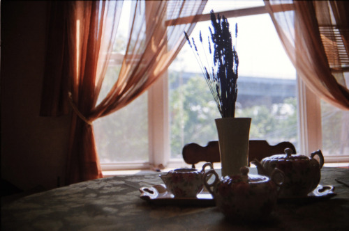 analog-anecdotes:  Astoria, Queens: September 2012.  Tea and the Triboro.  Canon AE-1