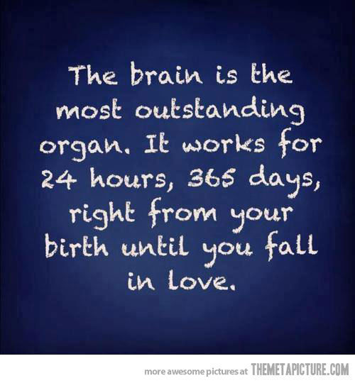Brain vs Love