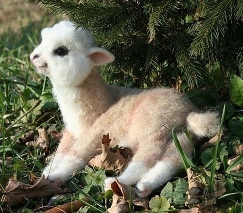 yumcircles:  athankyou:  baby alpaca  my heart just sank and tears are coming precious little fluffer nutter LOOK AT IT SMILING OMFG