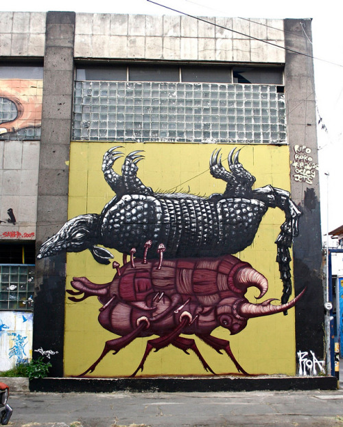 stencils:  Sego & ROA-Mexico City (by ROA !)