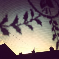 Morning #areyouawakeyet (Taken with Instagram)