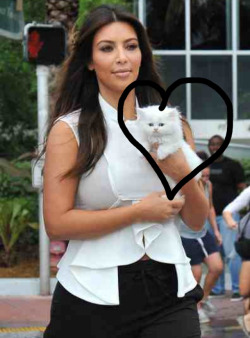 Kitty Kardashian!!!  The Kardashians are renowned for their love of pets, Kimmy K this weekend introduced the world to her new bundle of fluff 'Mercy'.  Kimmy K's latest accessory reminds me of the white kitten from Disney's 'The Aristocats' #Marie   So adorable!   I wonder how long it will be until we see more of the rich and famous follow in her footsteps??  #Keep-it-Kardashian