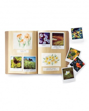 Modern Nature Notebooks (by Martha Stewart)  It's the 21st-century equivalent of a pressed-flower book: Instead of picking and pressing wildflowers, which depletes the local flora and is illegal in some places, take a snapshot with your smartphone. The Poladroid software will give photos a vintage feel. Then print and glue them in a notebook alongside your children's sketches of nature.  Scanning in pressings of flowers might also create a nice effect :) (I'm from Ireland, were we have an abundance of common wildflowers, so I personally don't feel too bad about picking them!)