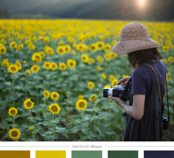 Color Inspiration Daily: 09. 11. 12 - Home - Creature Comforts - daily inspiration, style, diy projects + freebies
