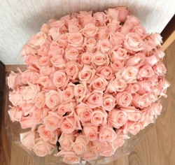 s-erenesun:  cyberqod:  dripping-gold:  dantia:  someone send me these flowers please  wishing my boyfriend would look at my tumblr right about now, hint hint.   wishing i had a boyfriend  i would be really happy if i get these flowers c':
