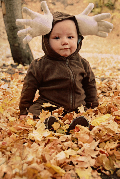 halloweencrafts: DIY Cheap and Easy Halloween Moose Costume Tutorial from The Dragon's Fairy Tail here.