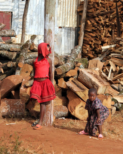 Children at the woodpile by 10b travelling on Flickr.