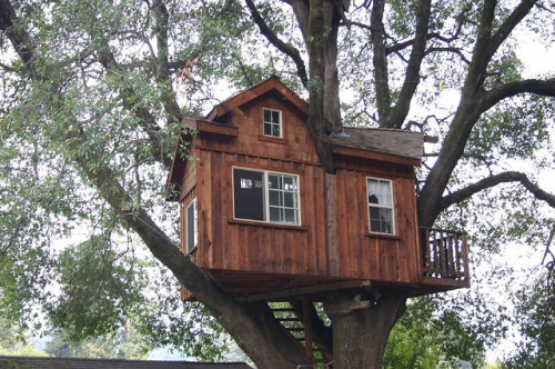 thesneakylittleminx:  Boulder Creek tree house by safoocat on Flickr.