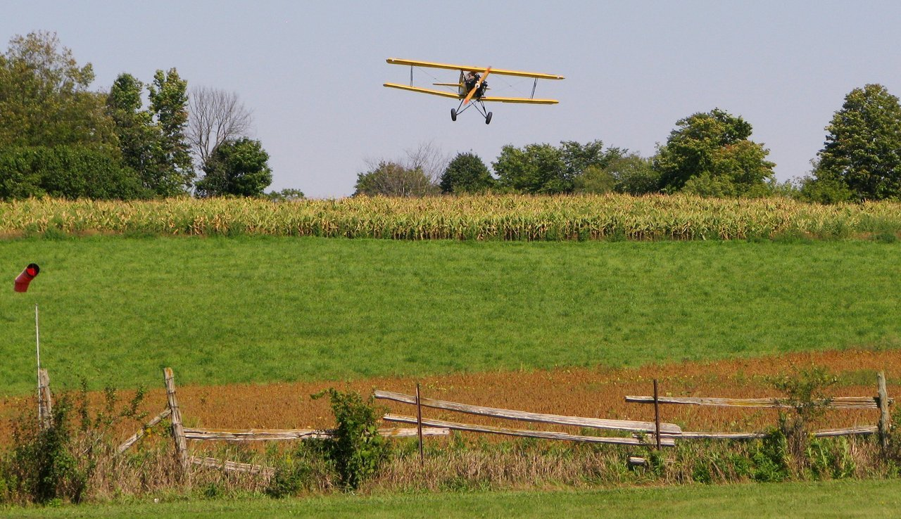 Actually, it is somewhere in Guelph, Ontario, circa 2012 Tiger Boys Fly Day