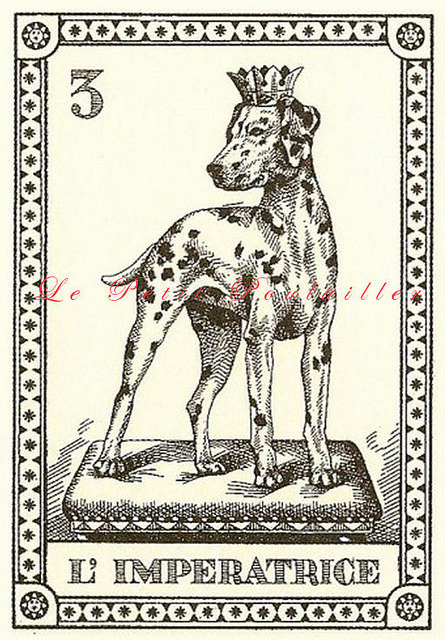 "1991 Il Cani del Mondo Canine Tarot Card by Osvaldo Menegazzi, #3 ""L'Imperatrice"" [The Empress], Dalmation, from my Flickr and available in my shop."