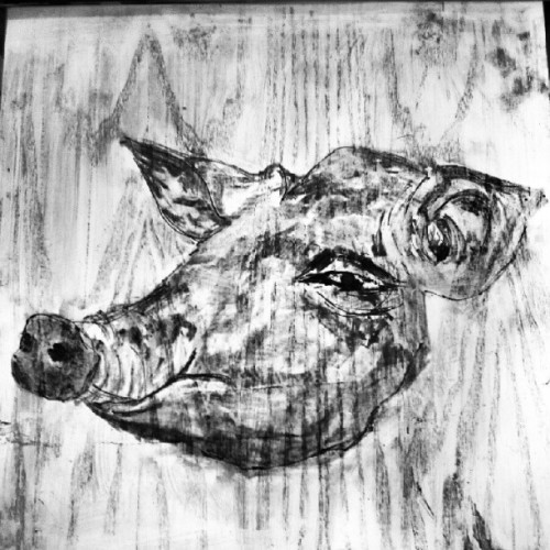 Drawing  on the wall #art #Drawing #pig #charcoal #maker #bw  (來自 Instagram)