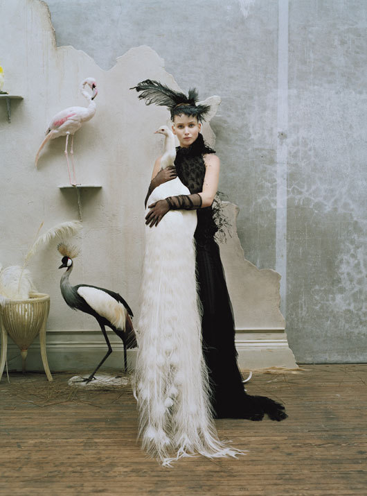 love-yours-truly:   Jennifer Lawrence by Tim Walker
